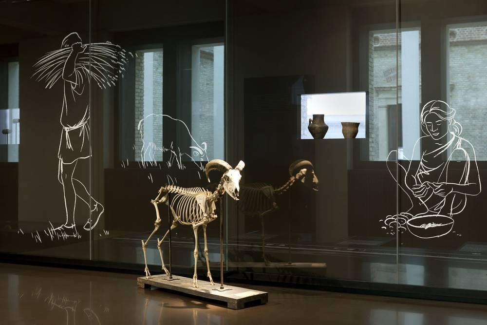 Ausstellung zur ck steinzeit bronzezeit eisenzeit for 15th floor berlin