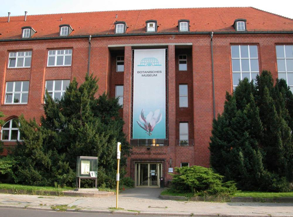 museum botanischer garten und botanisches museum berlin. Black Bedroom Furniture Sets. Home Design Ideas
